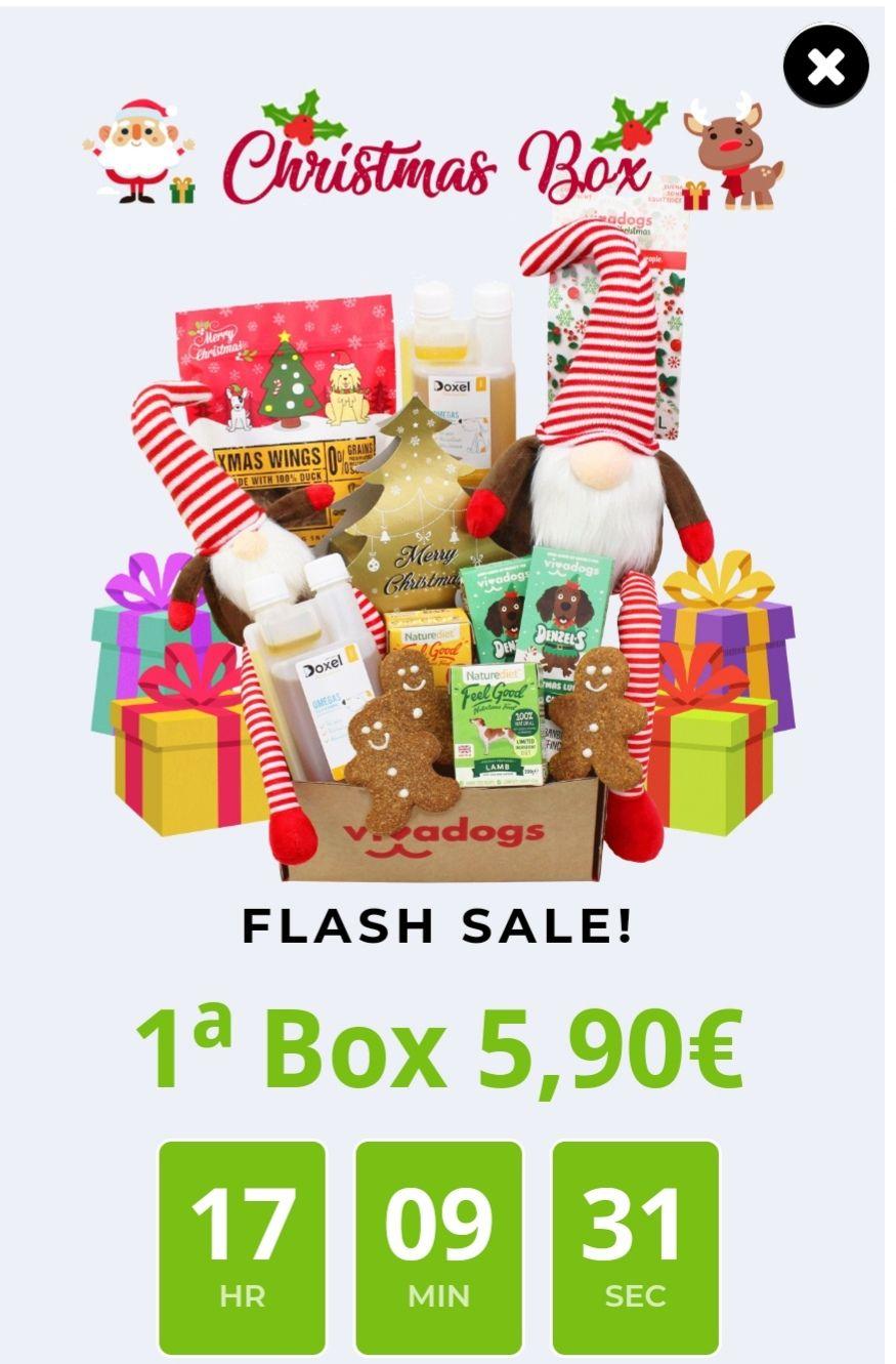 VIVADOGS Christmas Box!