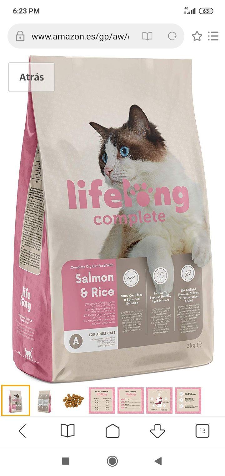 Comida de calidad para gatos