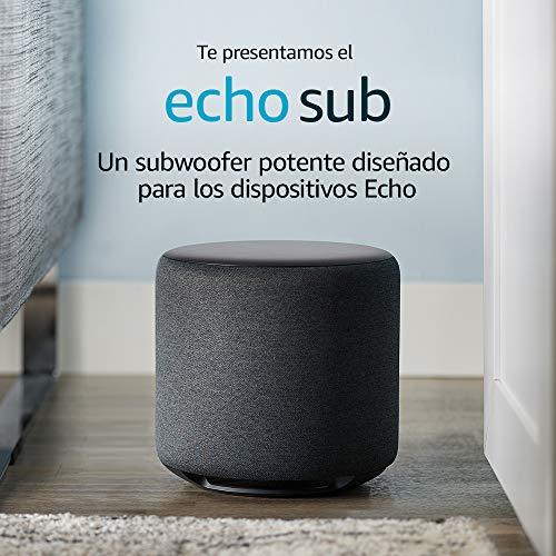 Echo Sub Reacondicionado Certificado