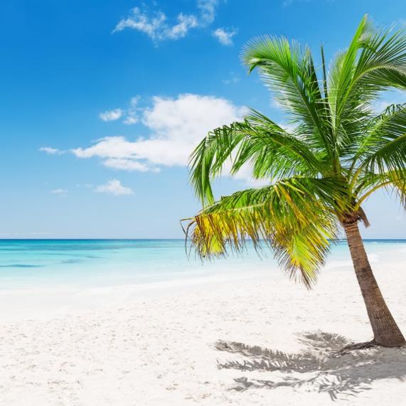 Punta Cana Todo Incluido solo 211€