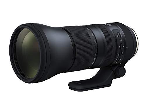Tamron Objetivo SP 150-600 mm para Canon y fotografíar renos