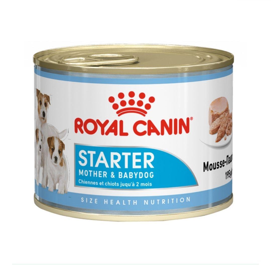 Comida para cachorros o perritas que han parido