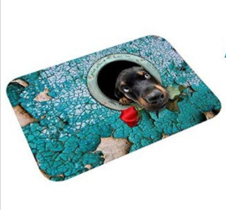 Felpudo alfombra antideslizante