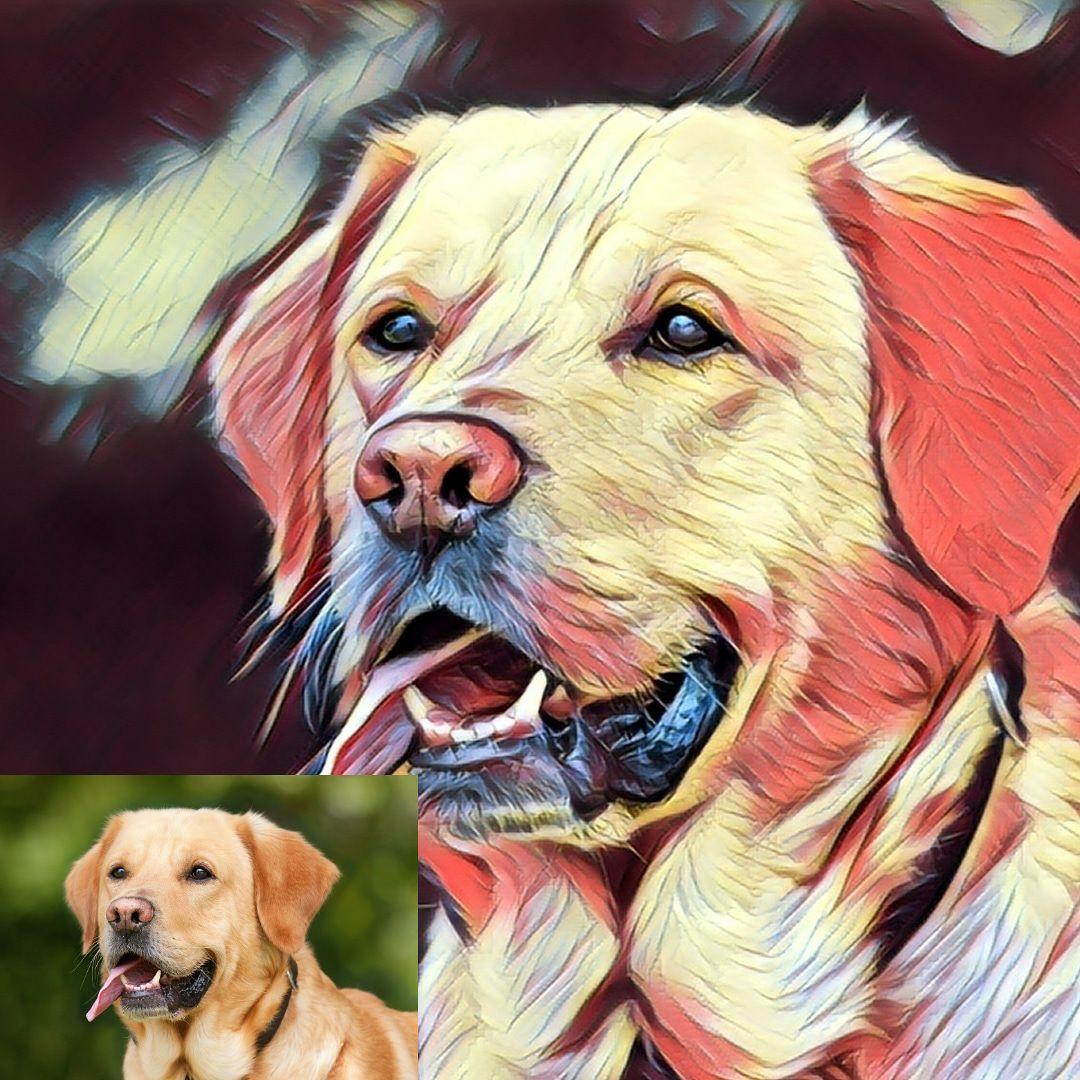 Envía la foto de tu mascota a la tienda online MascotaManías y te enviarán gratis su retrato digital