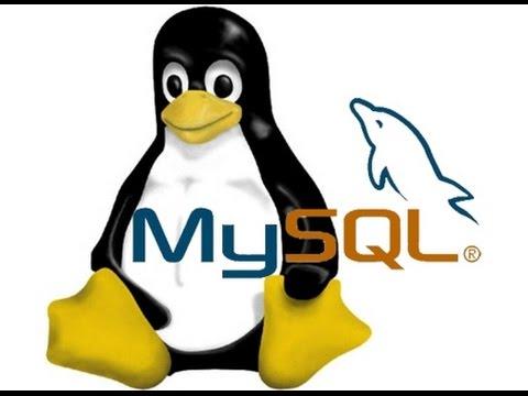 Curso Básico de Base de Datos MySQL con Linux