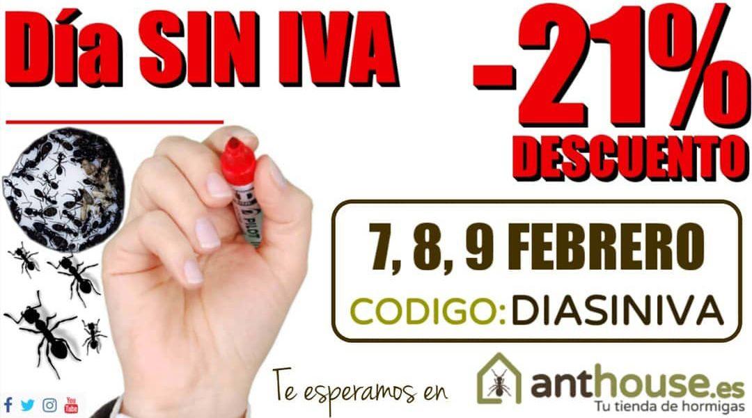 Día sin IVA en Anthouse