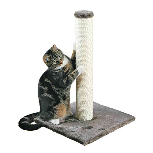 Poste Rascador Para Gatos Amazon