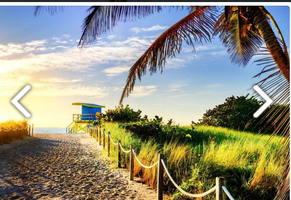 Miami (Mayo) Hotel3* 6 Noches +Almuerzos+Vuelos (Barcelona)