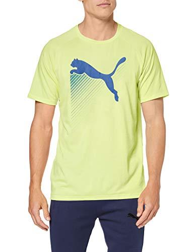 PUMA The Cat Heather tee Camiseta, Hombre en 6 colores.