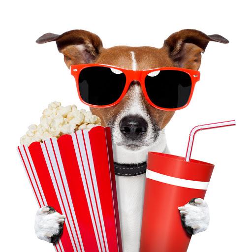 Entradas de cine a 1 euro para jóvenes de 14 a 30 años Cines GOLEM Pamplona