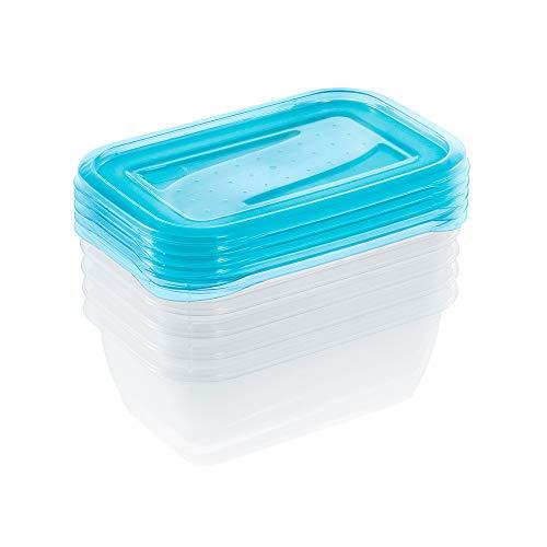 Set de 5 Fiambreras, 5 x 500 ml, 15,5 x 10,5 x 6 cm, Fredo Fresh, Azul transparente