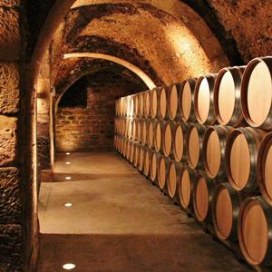 Bodegas Lecea Rioja :: Visitas y catas gratuitas durante 1 año para personal sanitario