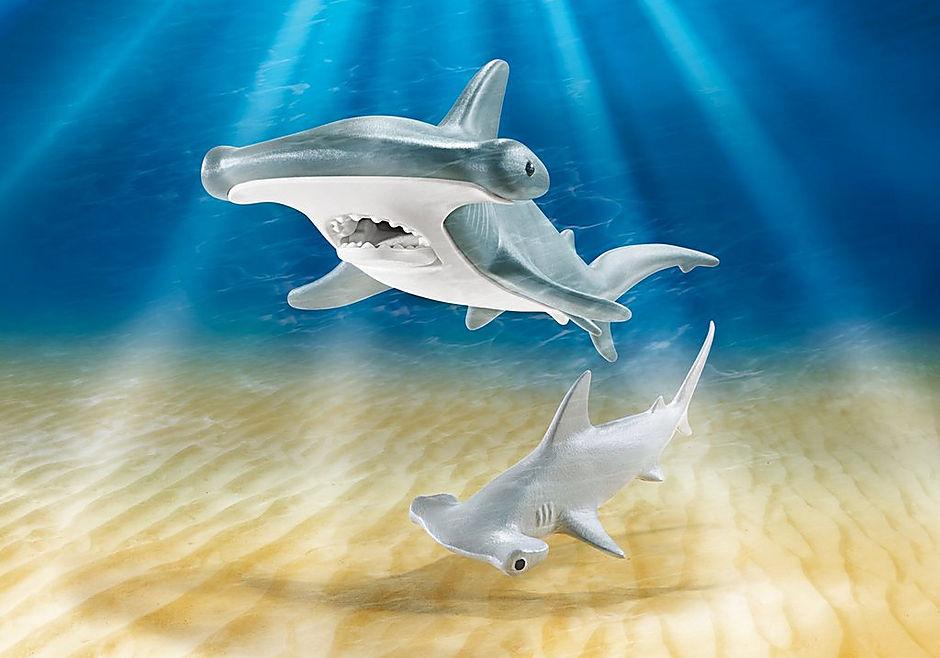 Tiburón Martillo y Bebé