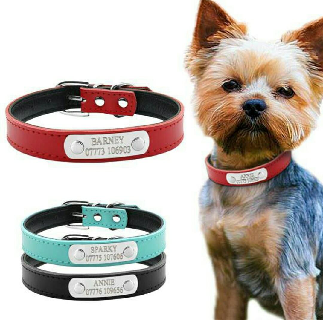 Collar personalizado para mascotas