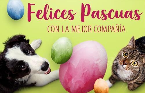 Ofertas para mascotas en zooplus