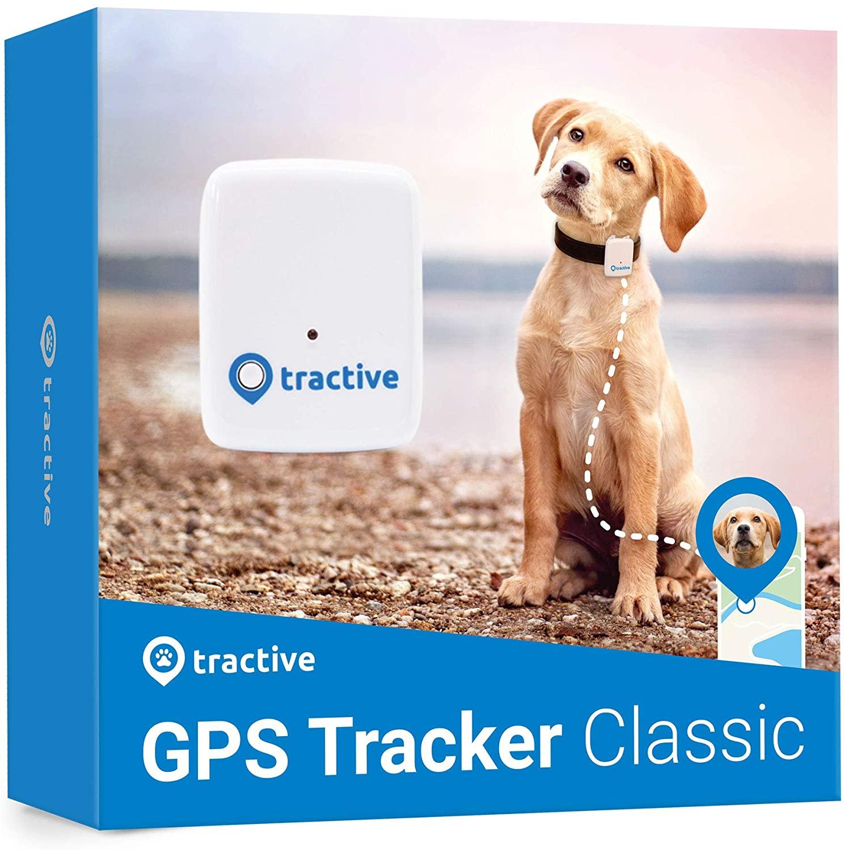 Tractive Localizador GPS para mascotas (Requiere plan de datos de telefonía)