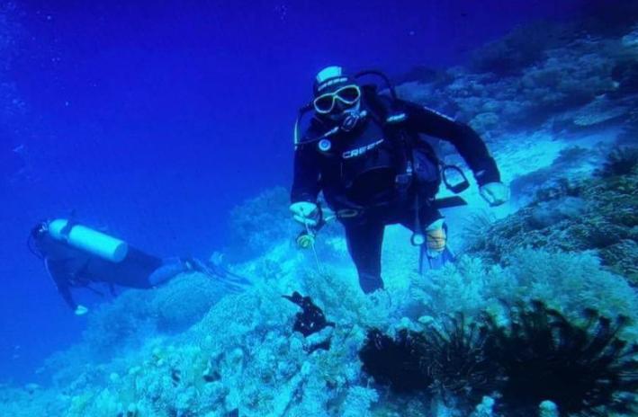 10 inmersiones + 7 noches de alojamiento Isla de Panglao (Filipinas)