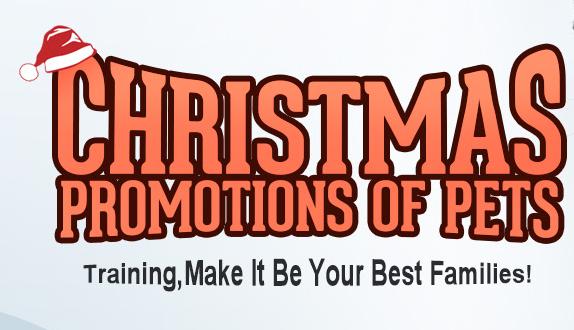 10% descuento en productos navideños para mascotas