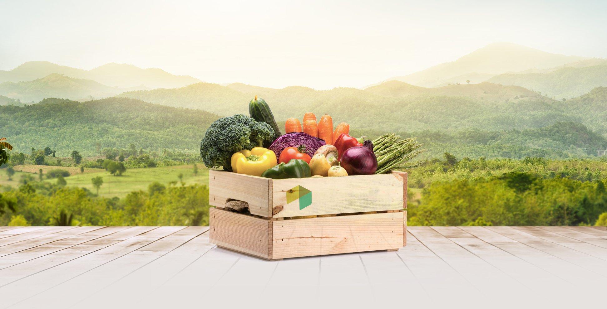 Cesta verduras BIO 10kg a 15€