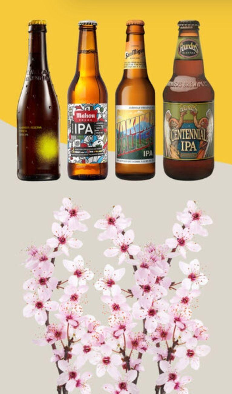 20% descuento directo en cerveza Ipa +Envío gratis a partir 10€