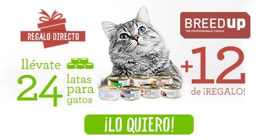Por la compra de 24 latas de comida para gato llévate 12 gratis