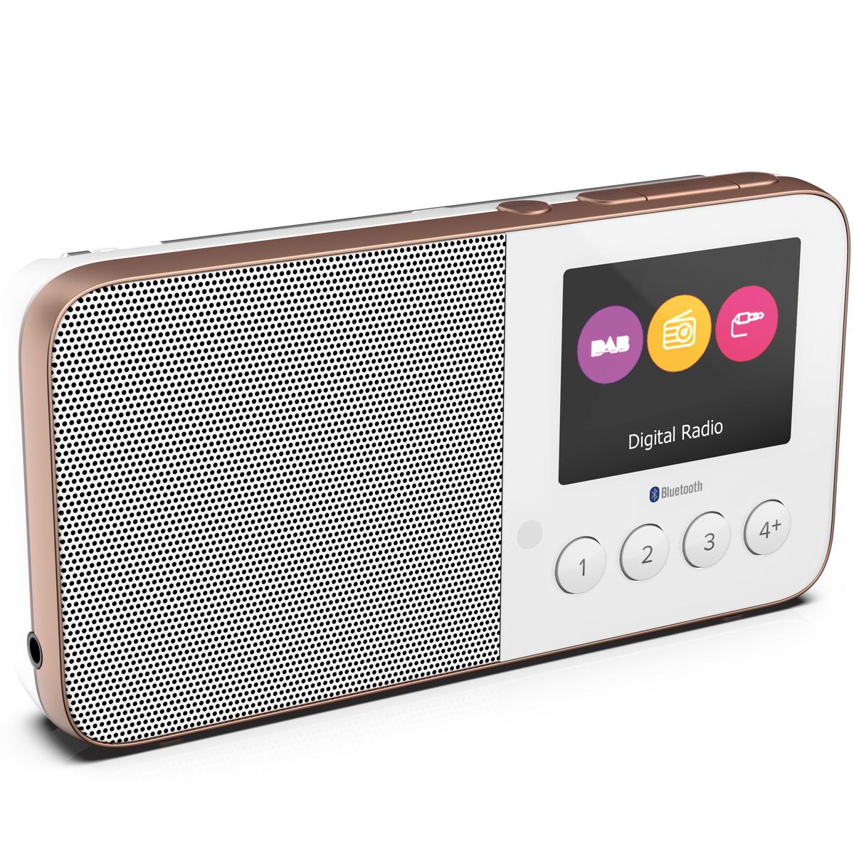 Radio Pure Move T4