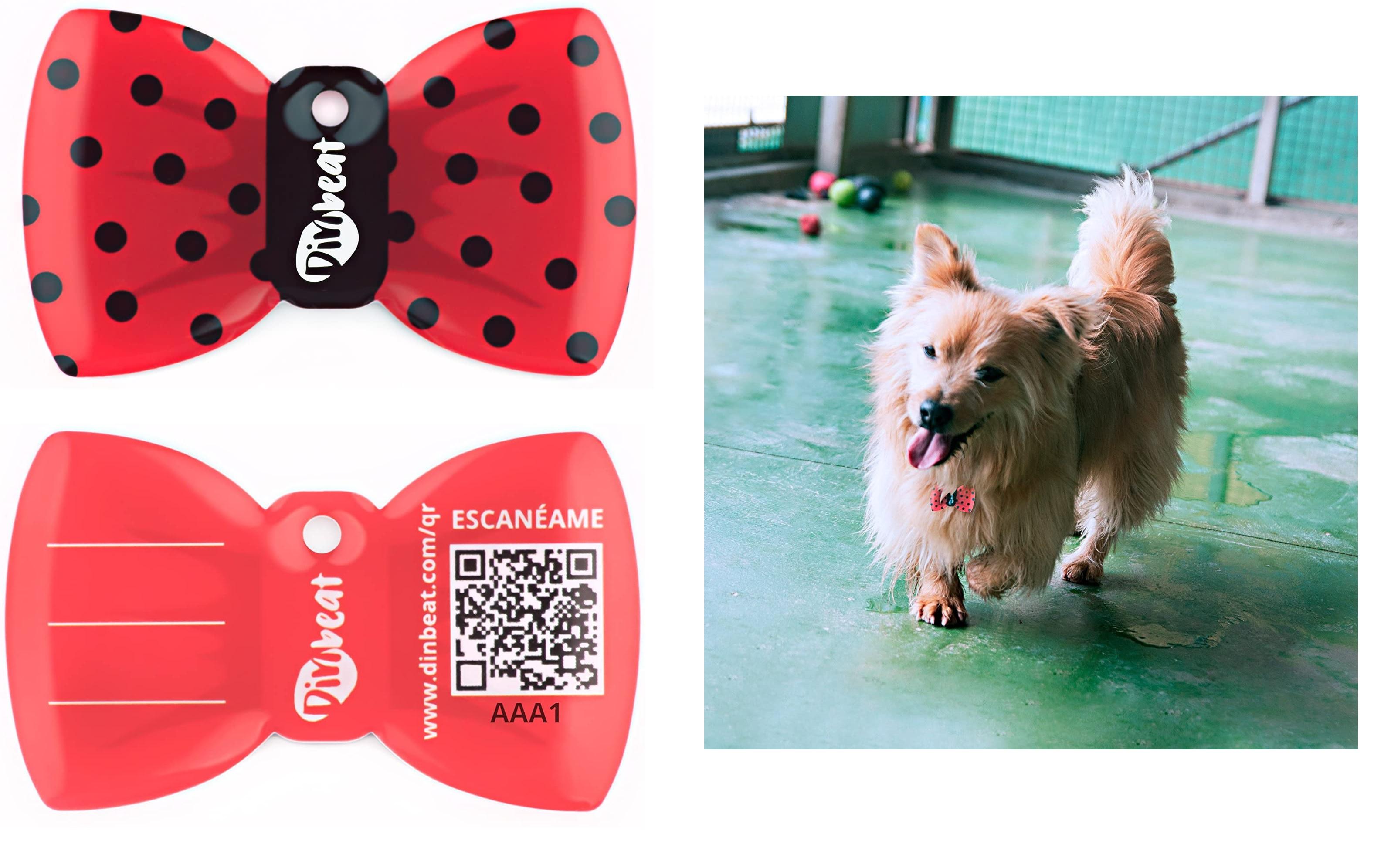 Dinbeat Placa modelo Pajarita Olé - Identificación Mascota QR (TSS)