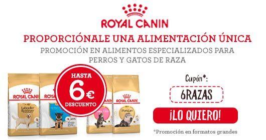 6 euros de descuento en los formatos grandes de Royal Canin razas