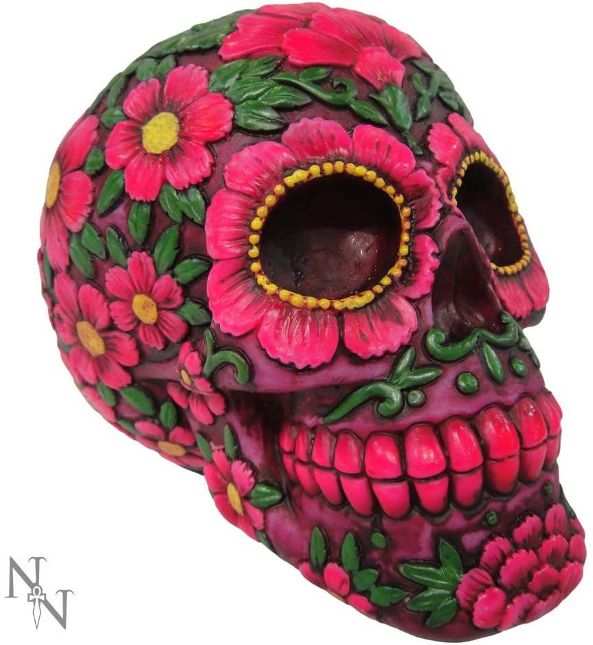 Nemesis Now - Hucha (21,5 cm) de resina, original y colorida (TSS)