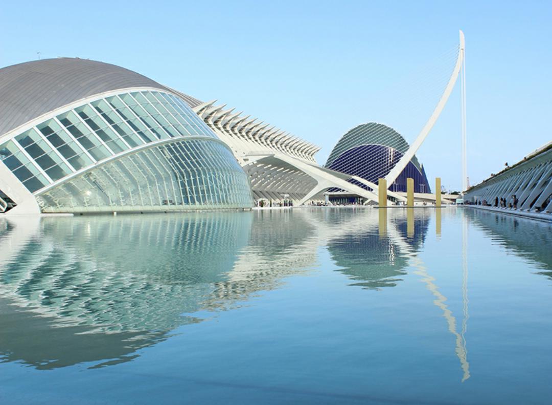 Entrada Museo de las ciencias Principe Felipe (Valencia)