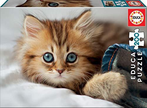 Puzzle gatito, 200 piezas marca educa