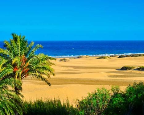 CIRCUITO Gran Canaria y Tenerife (7 noches con vuelos)