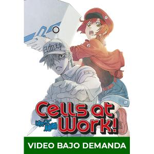 Anime Cells at Work! en DVD