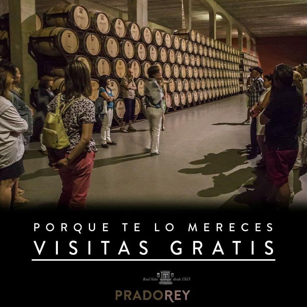 Visita gratis a Bodega + Degustación de vino, queso y aceite