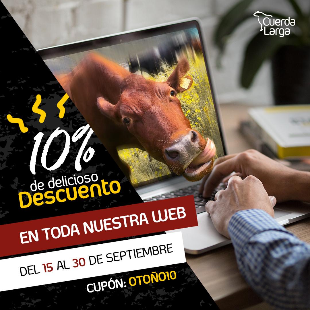 10% de descuento en toda la tienda online