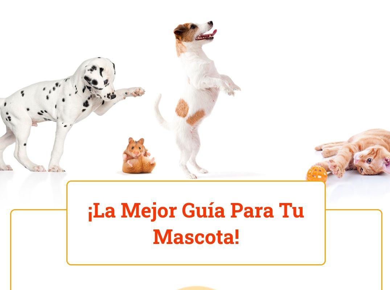Guías GRATIS con los mejores cuidados para tu mascota