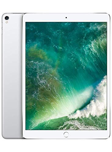 Apple iPad Pro (12,9 || 512 GB con Wi-Fi + Cellular) - Plata (Modelo Anterior)