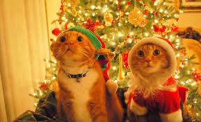 Lild recopilatorio de cositas de navidad