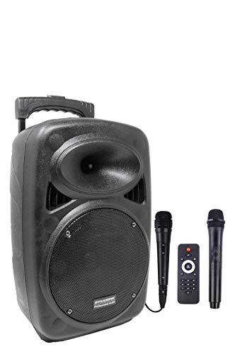 Cholloflash para fiestas post covid.DYNASONIC Inalámbrico Sistema Audio Profesional