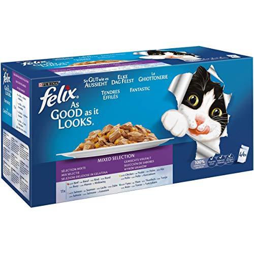 Sobres de comida húmeda para gato