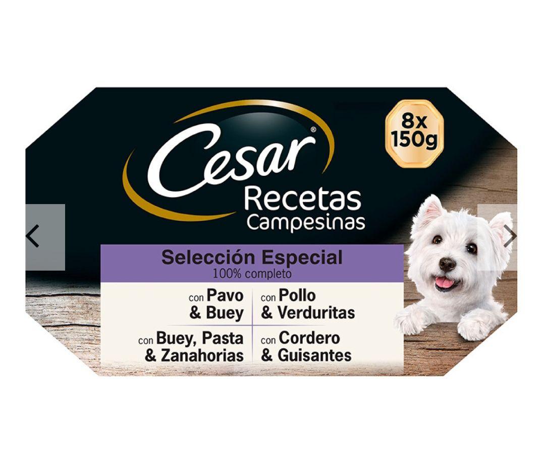Comida húmeda perros CESAR