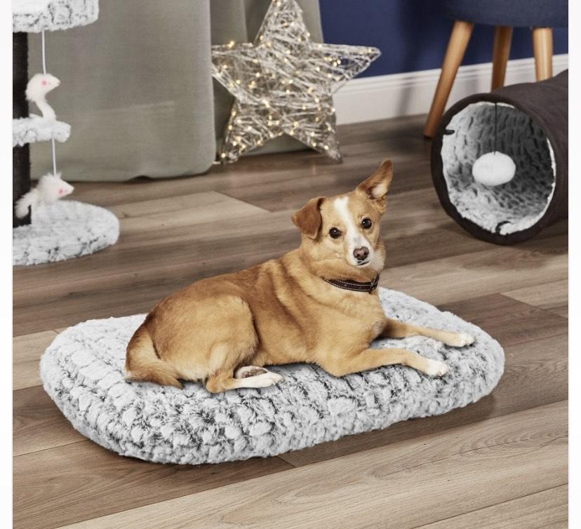 Aldi cama para mascotas y más cosas para nuestros peludos