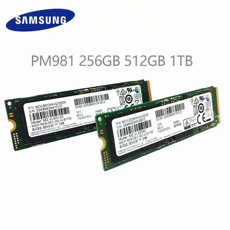 SAMSUNG SSD NVME PM981 512G y 512G Shockproof