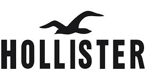 Hollister con 60% + envio gratis