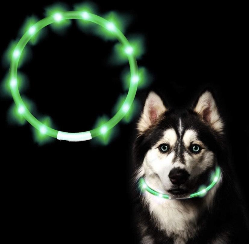 Collar de LED para mascotas USB Recargable Collar Perro, 3 Modos de LED