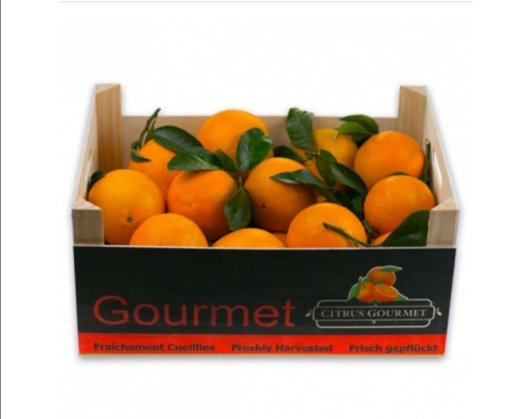 Naranjas y mandarinas premium de Valencia 8 Kg