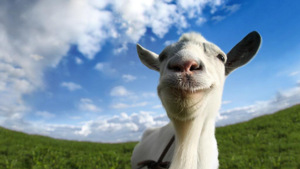 Goat Simulator: GOATY Edition