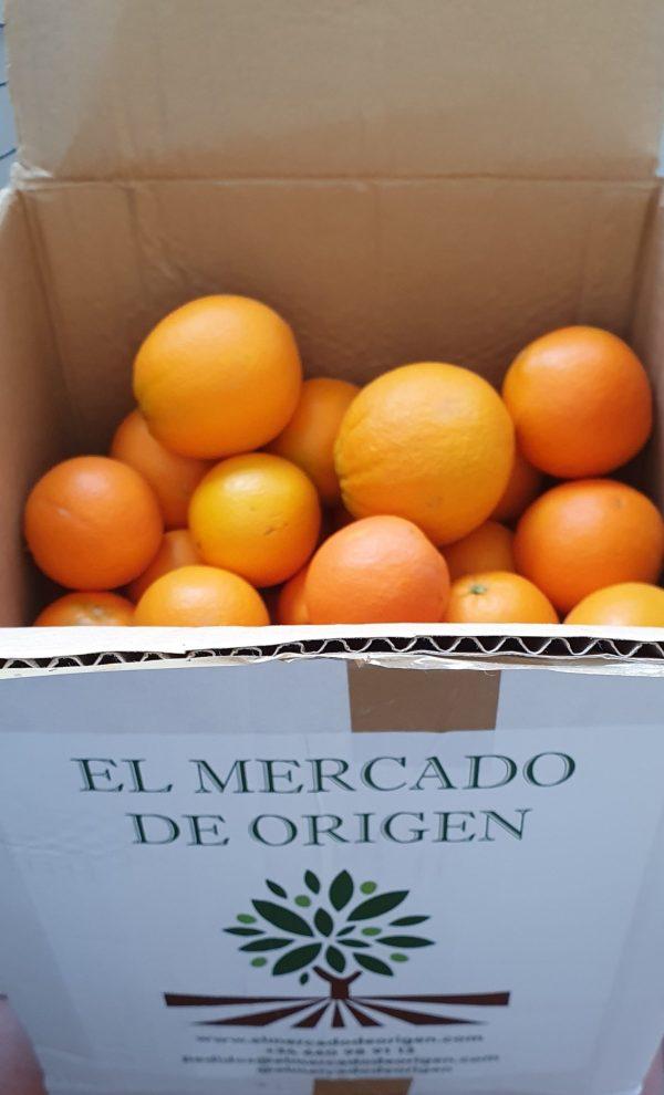 15Kg de naranjas de zumo de la variedad Salustiana