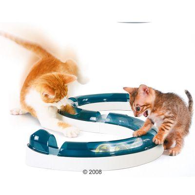 Circuito para ocio de vuestros gatitos o renacuajos (cachorros de r*no)