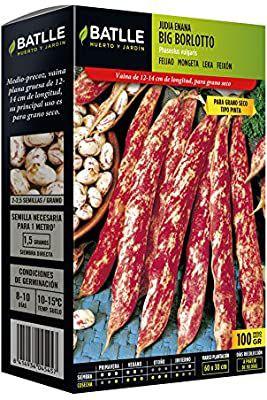Semillas Leguminosas - Judía enana Big Borlotto 100g